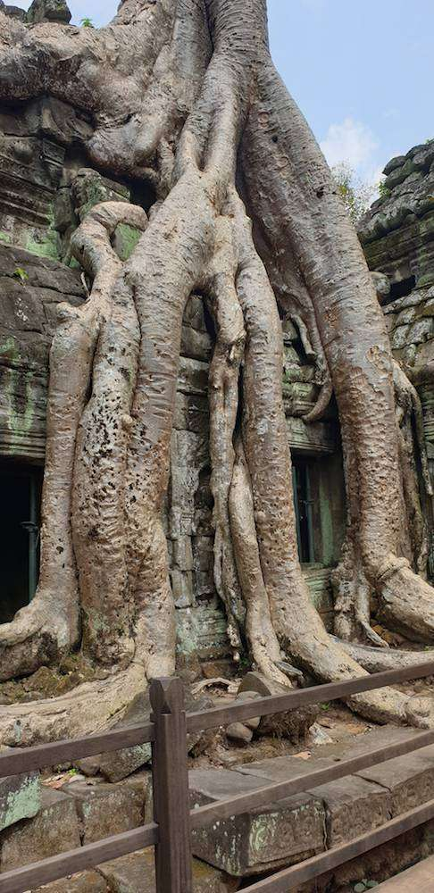 VietnamradtourTag15-(c)Bombach-078.jpg
