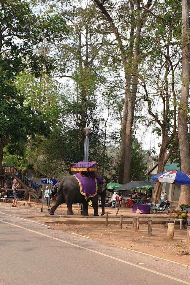 VietnamradtourTag15-(c)Bombach-097.jpg
