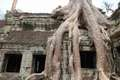 VietnamradtourTag15-(c)Bombach-184.jpg