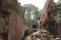VietnamradtourTag15-(c)Bombach-196.jpg