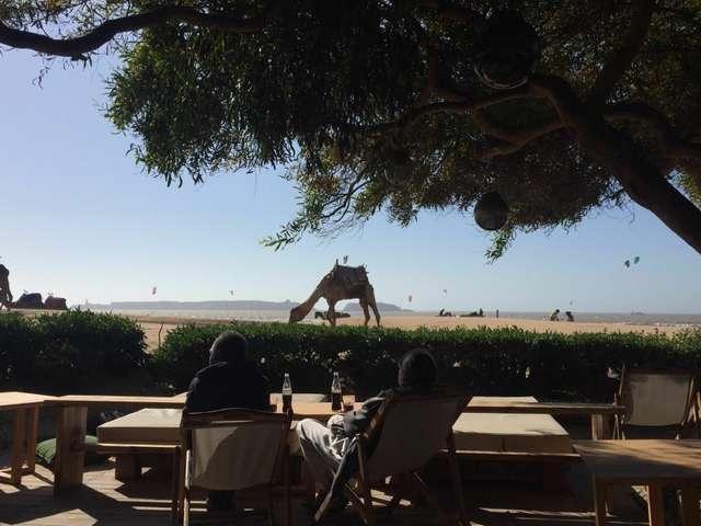 Marokko (c) Karsten Meier-285.jpg
