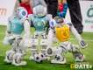 RoboCup-2019_DATEs_044_Foto_Andreas_Lander.jpg