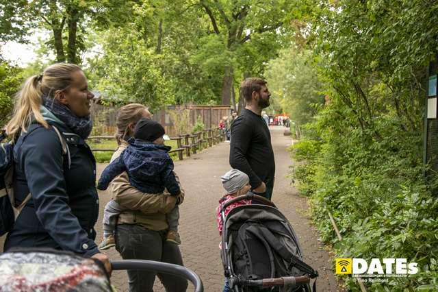 Zoo_Magdeburg-9231-Tino Reinhold.jpg