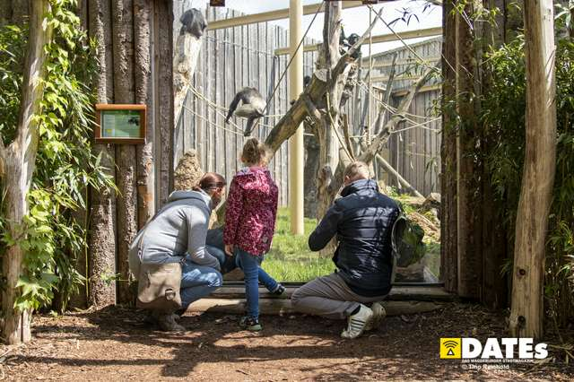 Zoo_Magdeburg-9312-Tino Reinhold.jpg
