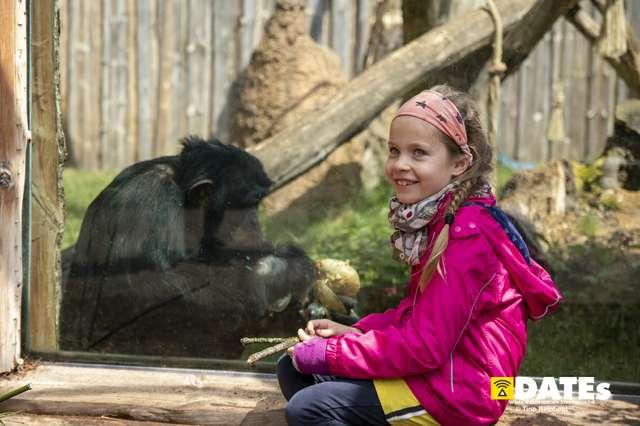 Zoo_Magdeburg-9320-Tino Reinhold.jpg
