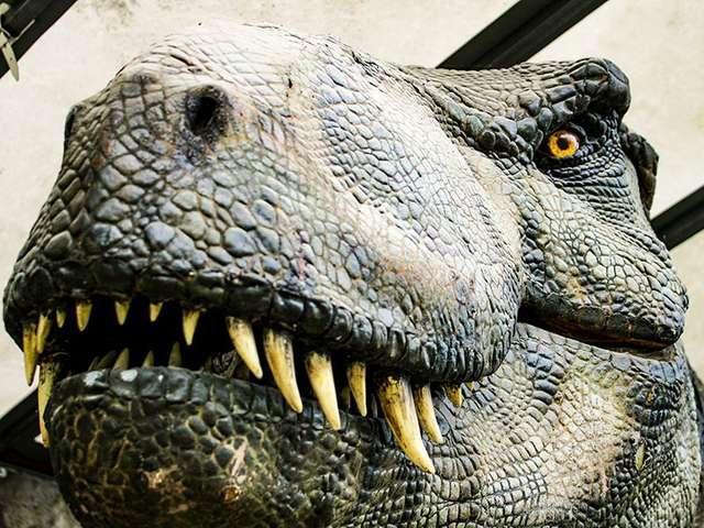 Dinosaurier - im Reich der Urzeit